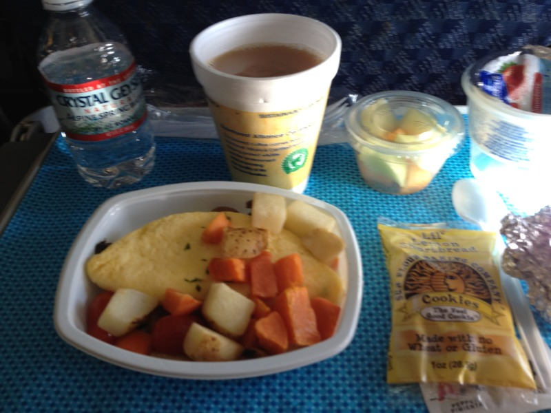 0A7FE19F 3A8B 475C 8B83 781D9D3FE55724 Gluten Free Meals on British Airways / American Airlines