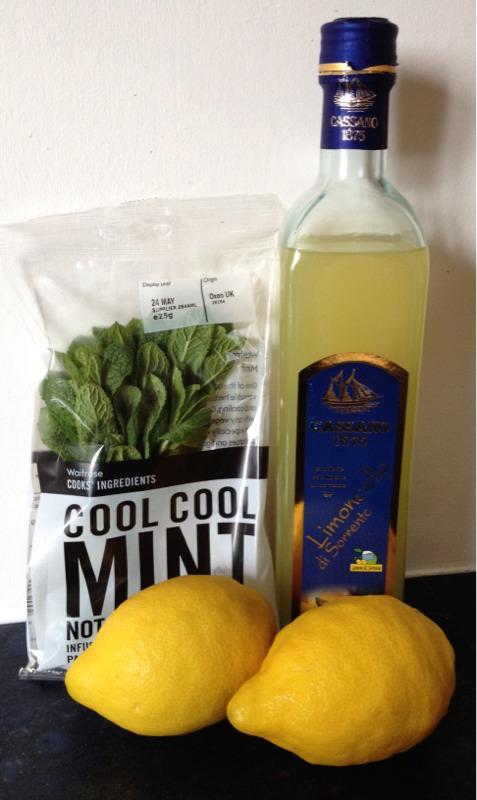 Gluten Free Recipe Challenge: Mint & Limoncello Granita
