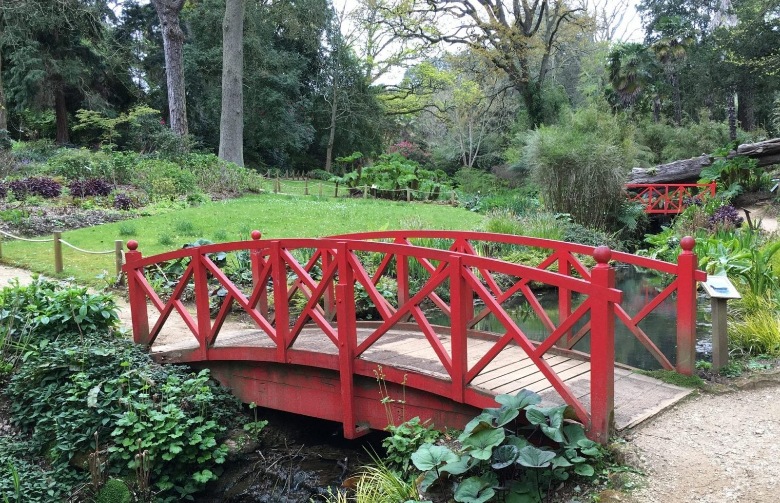 Gluten free dorset abbotsbury subtropical gardens for Sd garden designs